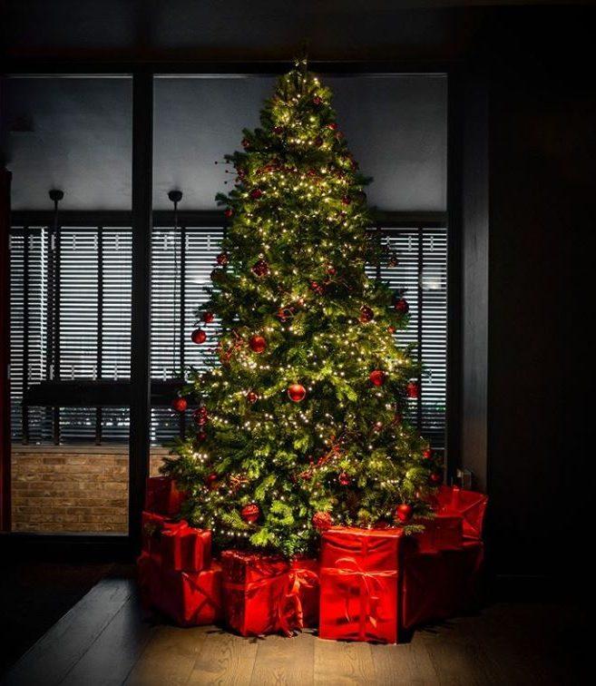 Christmas Tree at Dakota Glasgow